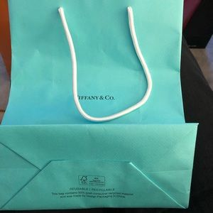 Tiffany and Company Medium Shopping Bag